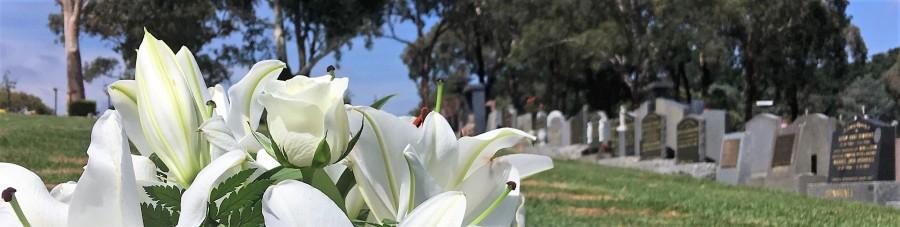 funerals, celebrant, female funeral celebrant, jacqui chaplin
